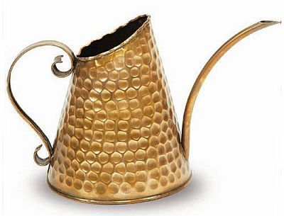 copper watering can - love it!