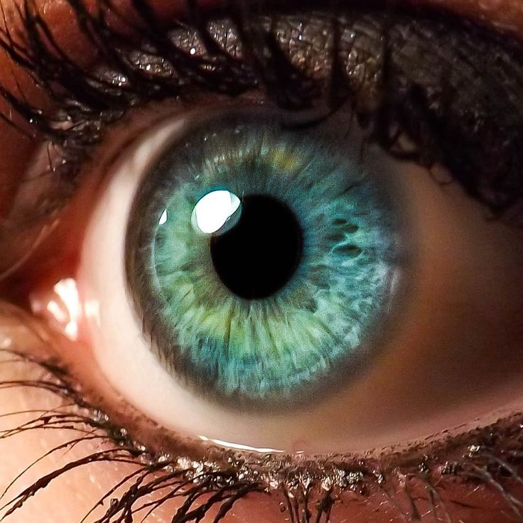 17 best ideas about eye color on pinterest eyes. Black Bedroom Furniture Sets. Home Design Ideas
