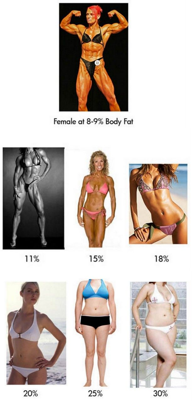 What the female body looks like at different body fat percentages.