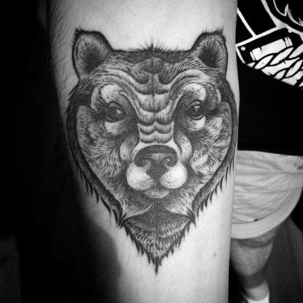 Healed bear head tattoo #linework #bw #black #blackink #blackwork #dotwork #tatoo #tattoopins #tattooartist #tattoosketch #toptattooartist #aurorazlova #bear #bearhead #тату #татуировка #медведь #лайнворк #дотворк #чб #питертату #питер