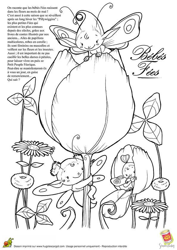 Les Bebes Fees, page 11 sur 16 sur HugoLescargot.com