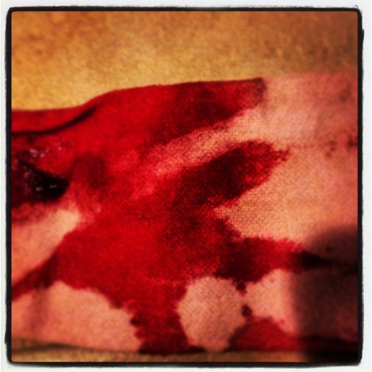 Tumblr tara lipinski nude