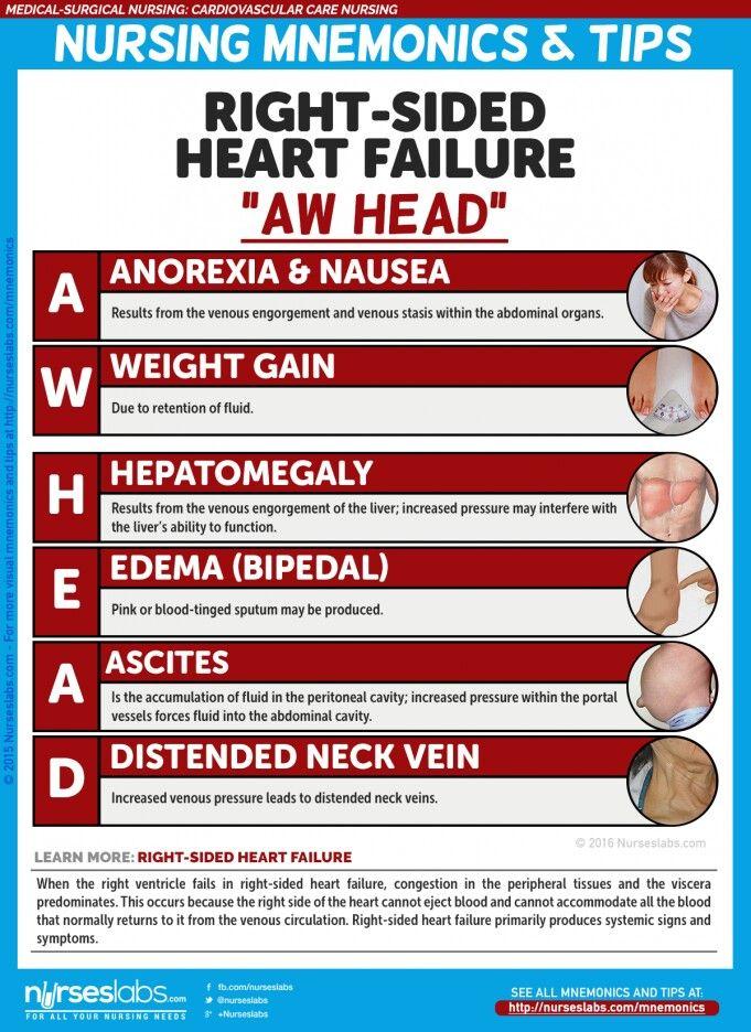 heart cheat sheet Heartsaver® first aid skills sheet american heart association heartsaver first aid side 1 of 2  heartsaver® first aid skills sheet american heart association.