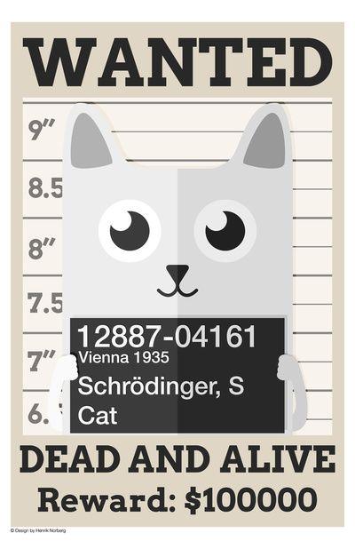 Schrödingers Cat Art Print   Henrik Norberg