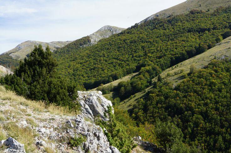 Nationaal park Galičica bij het meer van Ohrid in Macedonië. # ...