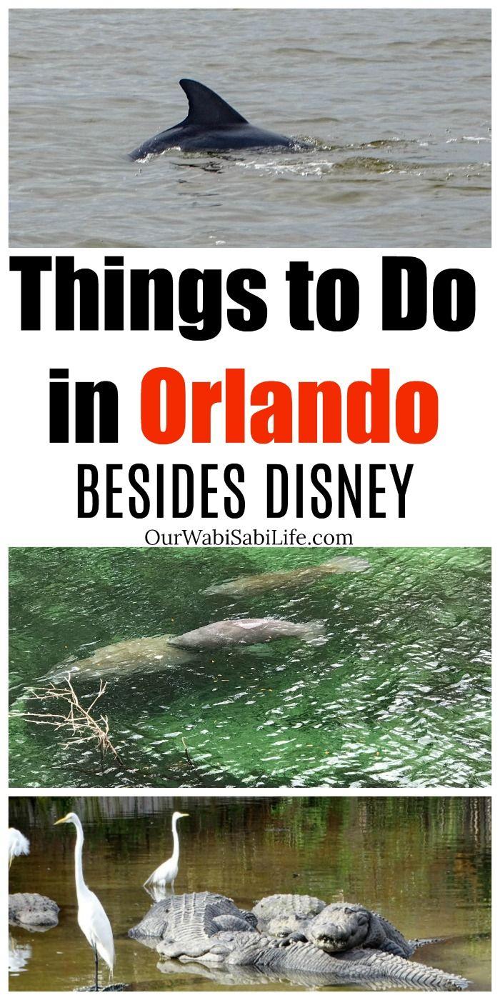 14 Ultimate Things To Do In Orlando Besides Disney World Orlando Florida Vacation Orlando Travel Orlando Vacation