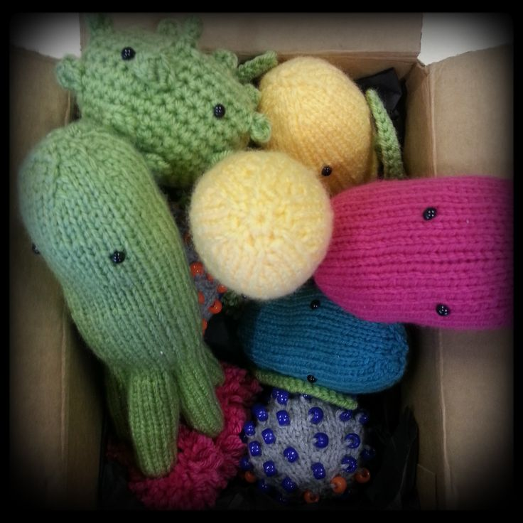 Out-of-the-box #microbes arrive in #Glasgow :-)   http://www.glasgowcityofscience.com/get-involved/knitting-microbes