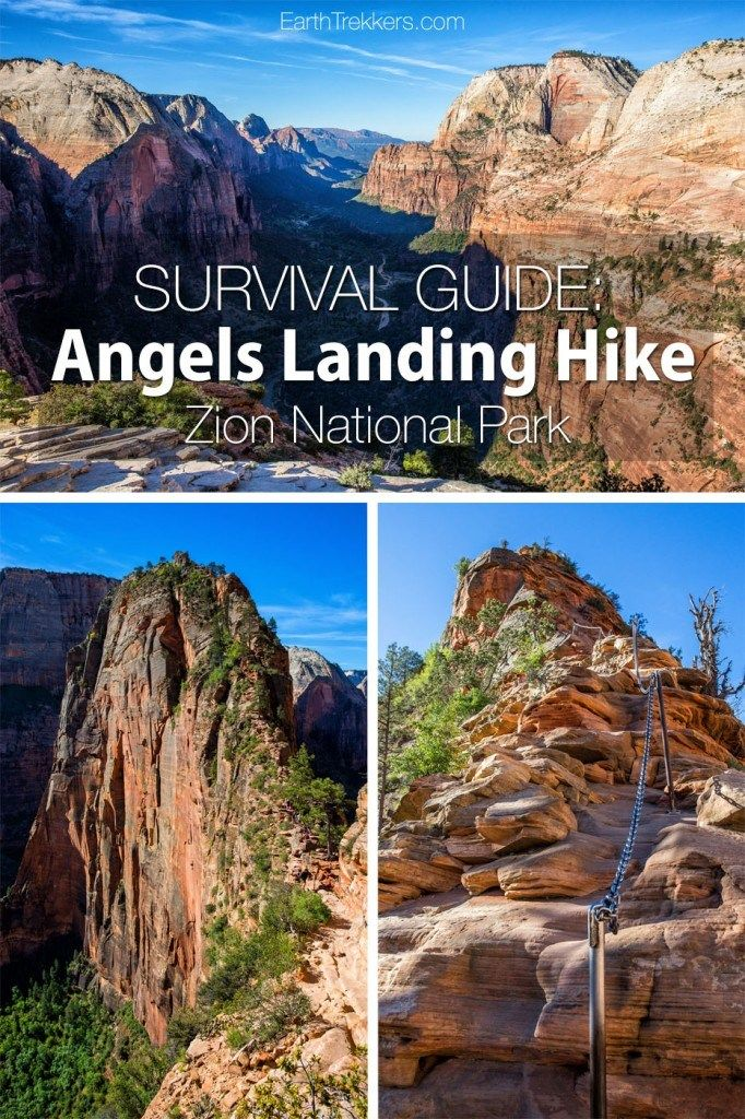 Angels Landing Survival Guide: Things to Know Before You Go