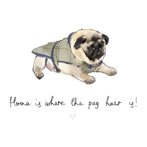 'Home is where the pug hair is' Bryony Fripp exclusive to Cupcake Pug co A4 print