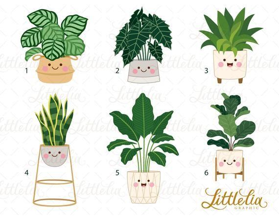 House Plant Clipart Kawaii Plant Clipart Indoor Plant Clipart 19002 Plantas Clipart Plantillas Para Dibujar