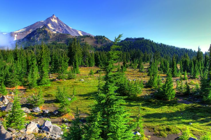 Mt. Jefferson. Oregon Cascades.  nature