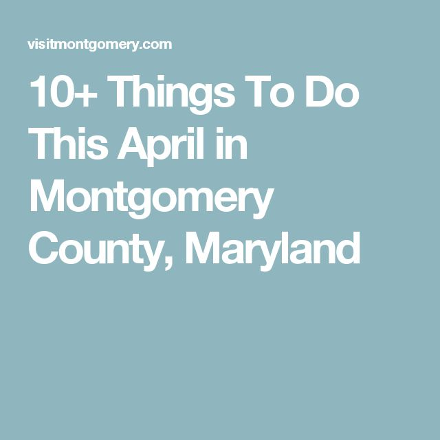 10+ Things To Do This April in Montgomery County, Maryland