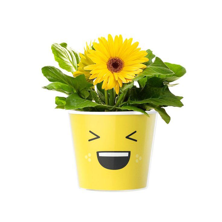 Emoji LOL Flower Pot