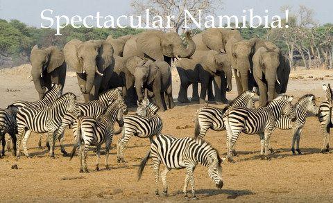 Family-friendly Namibia tours - http://www.gateway-africa.com/namibia-tours-safaris.htm