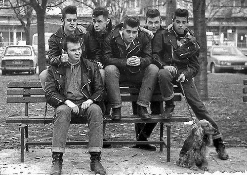 Gotta love Greaser hair! By the way they look so bad ass with that puppy