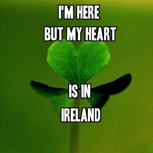 Happy Birthday Jd Meme >> 1317 best Irish Blessings, Sayings, & Symbols images on Pinterest | Irish pride, Irish proverbs ...
