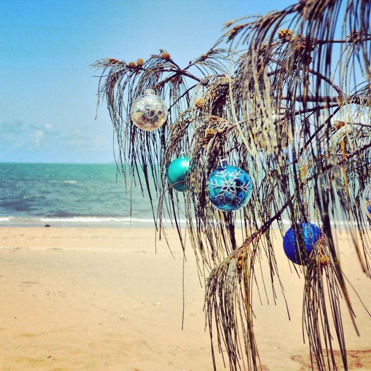 A tropical Christmas, Queensland style. (Pallarenda Beach, Townsville)