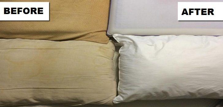 cuscini-bianchi
