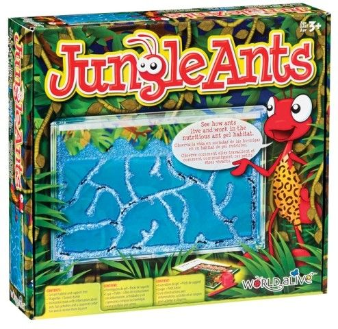 World Alive - Jungle Ants Habitat We love creepy crawlers at our house. What a great way to learn more about ants! #EntropyWishList #PinToWin