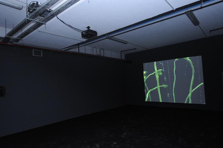 "Saskia Olde Wolbers TRAILER, 2005 video installation, 10' Courtesy: Maureen Paley, London Installation view, 2nd Athens Biennale 2009 ""Heaven"""