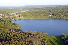 Skove. Elle- og askeskov. Elle- og askeskove ved vandløb, søer og væld. Elle- og askeskov betegner sådanne skove eller bevoksninger, hvor el og ask er fremherskende træarter.  Bevoksningerne er forholdsvis åbne med en frodig bundflora af urter, der trives ved rigelig tilgang til vand og næring.  Elle- og askeskove forekommer i områder med fugtig bund med en vis vandbevægelse. Jorden er iltet og frisk, undtagen ved oversvømmelse.  Træ- og plantearter: Rød-el,  Grå-El,  almindelig hæg…