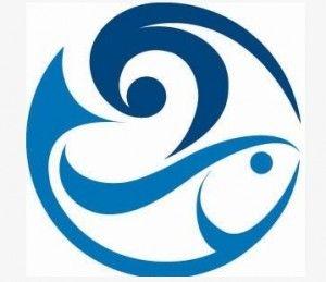 9 best ocean logos 2 images on pinterest logo google logo ideas rh pinterest com ocean logic ocean logistics ltd