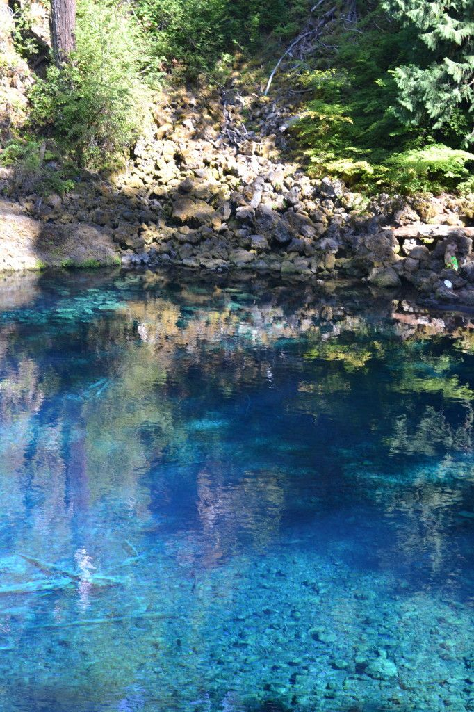 25 Best Ideas About Tamolitch Pool On Pinterest 3 Pools Oregon Blue Pool And Blue Pool Oregon