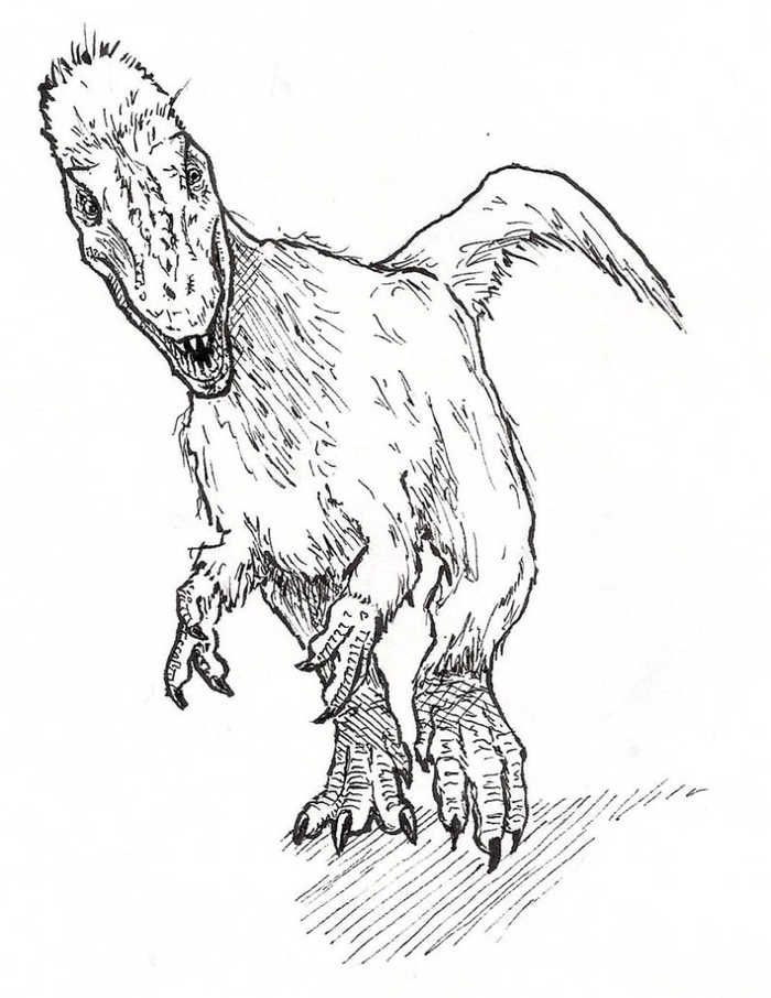 Adorable Yutyrannus Dinosaur Coloring Page Discover Other