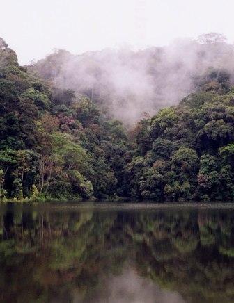 Tchimbele (Mont de cristal, Gabon)