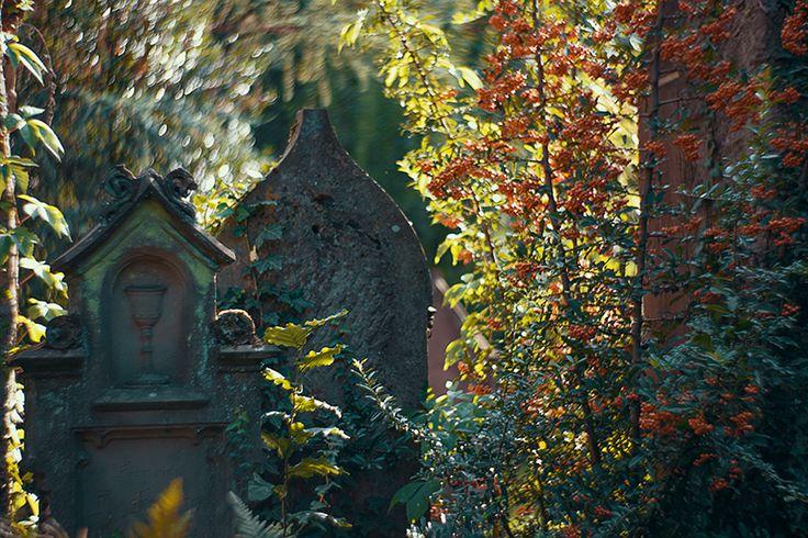 Alter Friedhof in Freiburg, Deutschland