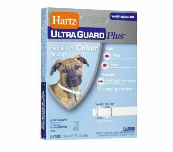 Hartz Ultraguard Collar Flea Tick Dogs Guard Plus Puppies Necks White New Free 32700942670 Ebay In 2020 Flea And Tick Ticks On Dogs Fleas