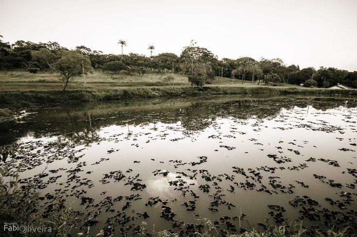 Lago by Fabio Oliveira - Photo 149580187 - 500px