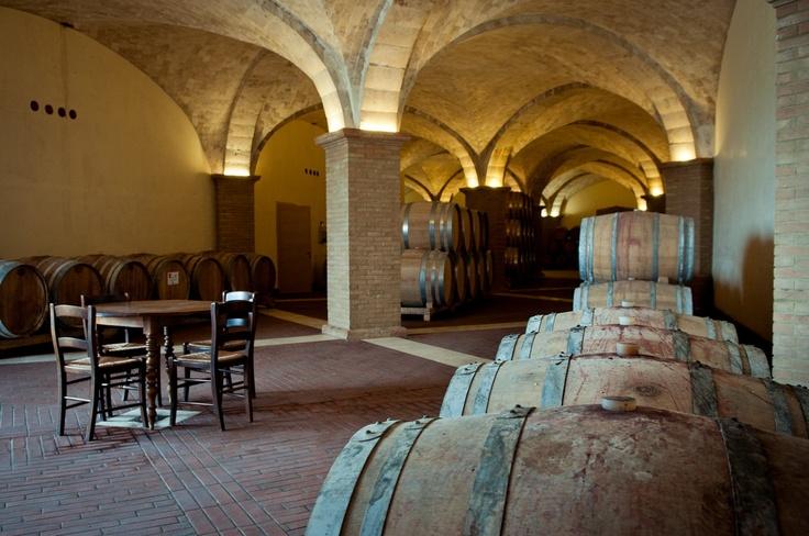 our new Wine Cellar    la nostra nuova bottaia