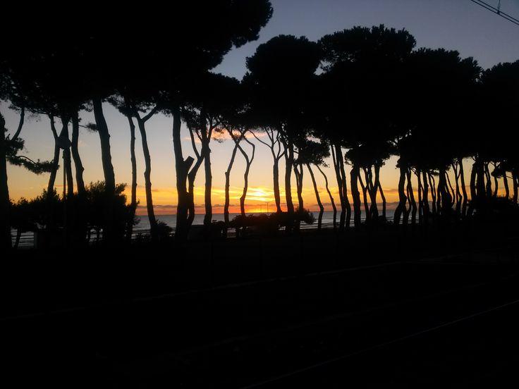 Tramonto a Pineto http://www.uniquevisitor.it/abruzzo/mare/pineto/pineto.php