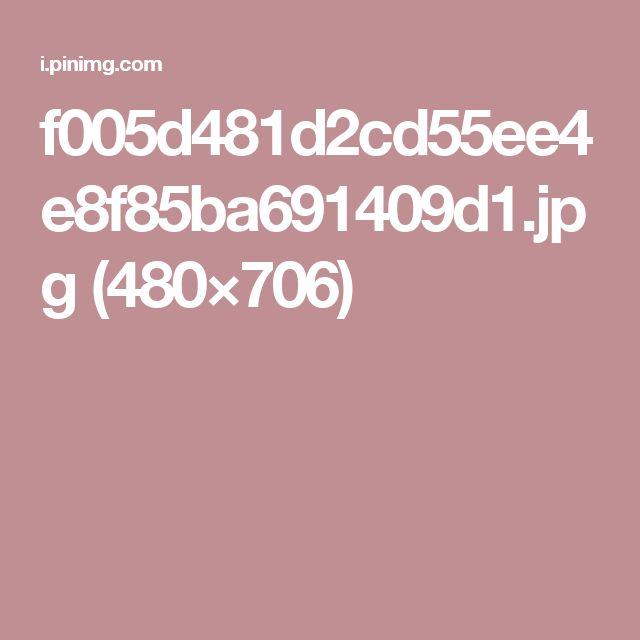 f005d481d2cd55ee4e8f85ba691409d1.jpg (480×706)