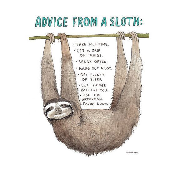 Sloth Art Print Sloth Humor Sloth Lover Funny by DrawnFromMyBrain