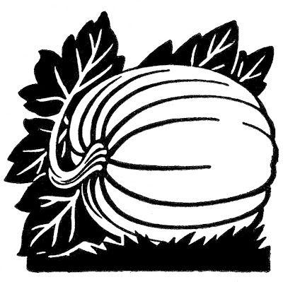 Vintage Thanksgiving Graphics - Pumpkin on Vine - The Graphics Fairy
