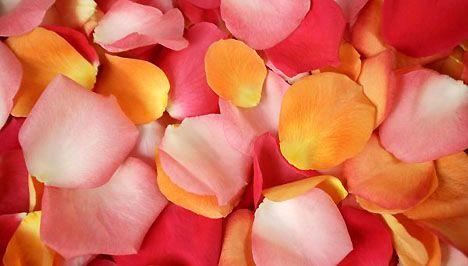 Rózsaszirom