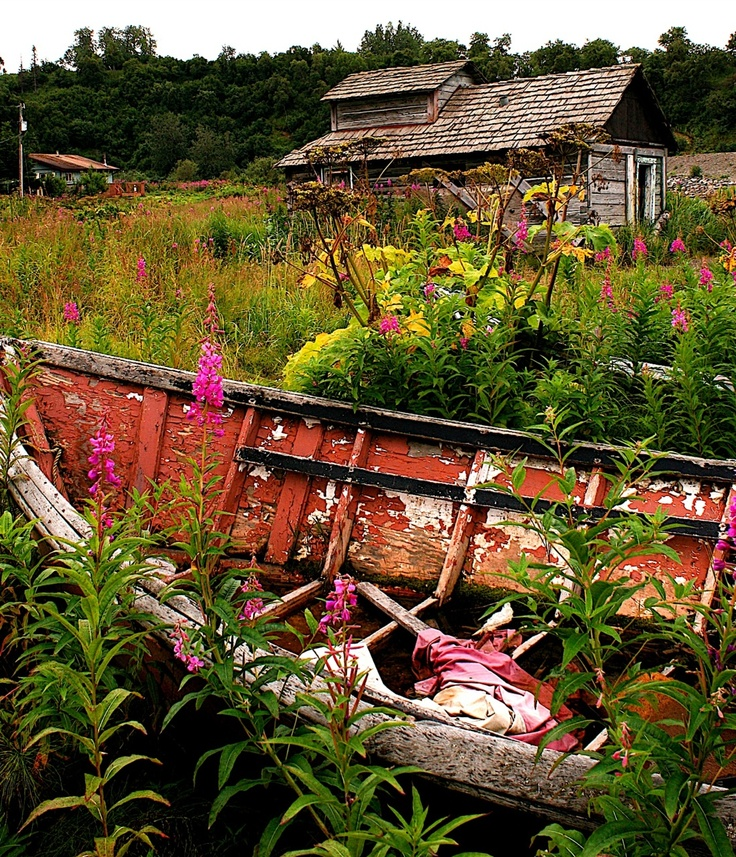 49 Best Images About Boats In The Garden On Pinterest