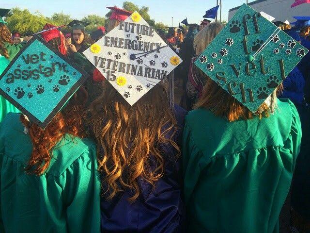 vet tech grads  decorated grad caps