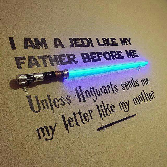 Star Wars & Harry Potter Parody Design Vinyl Wall Decal