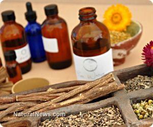 Homeopathic and herbal remedies for surviving bioterrorism attacks - A disaster plan for emergency preparedness