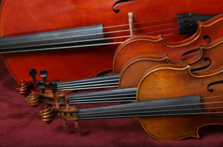 Interessados podem se candidatar para os seguintes naipes: violinos; violar; violoncelos; contrabaixos; flautas; oboés; fagotes; trompetes; tuba; e percussão.