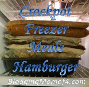 Crockpot Freezer Meals Hamburger series - spend a couple hours one day putting together your meals in ziplock bags and you'll have days of quick, easy dinners! Just pull out of the freezer and put into the crock. Love it!