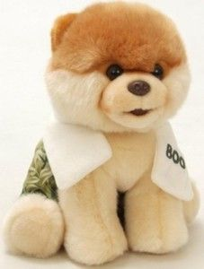 Gund Stuffed Animals: Gund Boo The World's Cutest Dog With Swim Trunks & Towel 9″ Plush Toy This is absolutely adorable! It measures 9 inches. Made exclusively for Comfy Baby on the Go. http://awsomegadgetsandtoysforgirlsandboys.com/gund-stuffed-animals/ Gund Stuffed Animals: Gund Boo The World's Cutest Dog With Swim Trunks & Towel 9″ Plush Toy