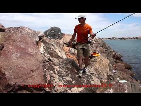 conseil pèche , conseil pèche a la ligne  tout savoir sur la pèche a la ligne, étang lac rivières ou mer  La pratique de la pêche, qu'elle soit de rivière, en étang ou en mer, nécessite quelques connaissances techniques. Ces tutoriels destinés aux débutants, vous guideront pour choisir le bon équipement et monter correctement une ligne de pêche.   En savoir plus sur http://bric-a-brac2.e-monsite.com/pages/peche-a-la-ligne.html#RD9w50YtQK5JYciT.99