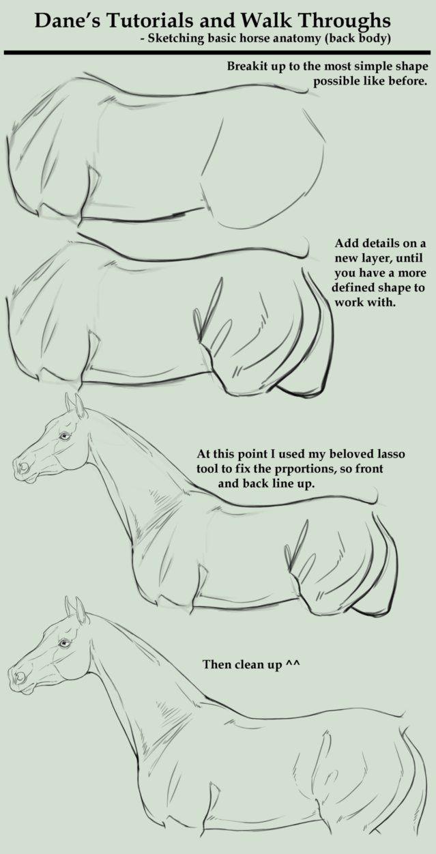 Tutorial/Walk Through - sketching a HORSE BODY by *AgerskovArt on deviantART