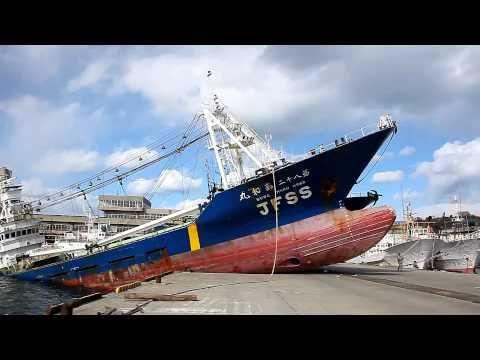 ▶ 東北地方太平洋沖地震 津波被害 福島県いわき市小名浜漁港 - YouTube-