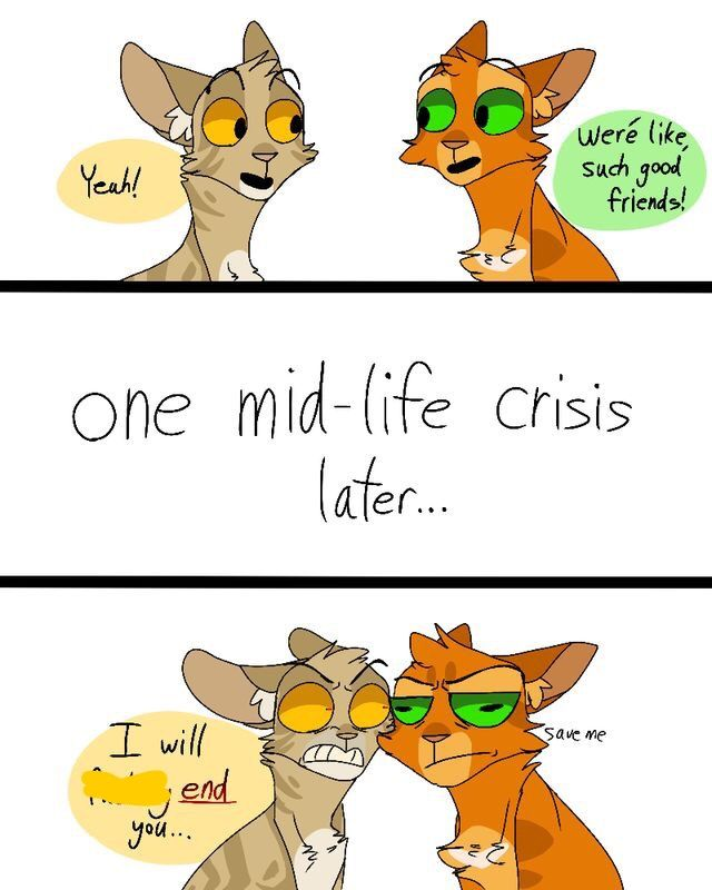 How Many Warriors Books By Erin Hunter Are There: Firestar And Onestar Funny Not My Art