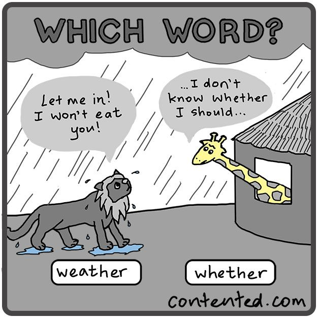 """Which word, """"weather"""" or """"whether""""? What a drama! Our Painless Grammar course brings peace and confidence: only one hour long. http://contented.com/collections/business-writing/products/painless-grammar"""